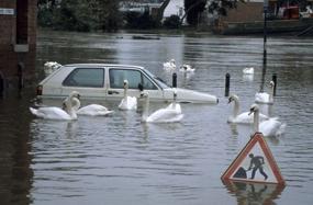 overstromingsrisico